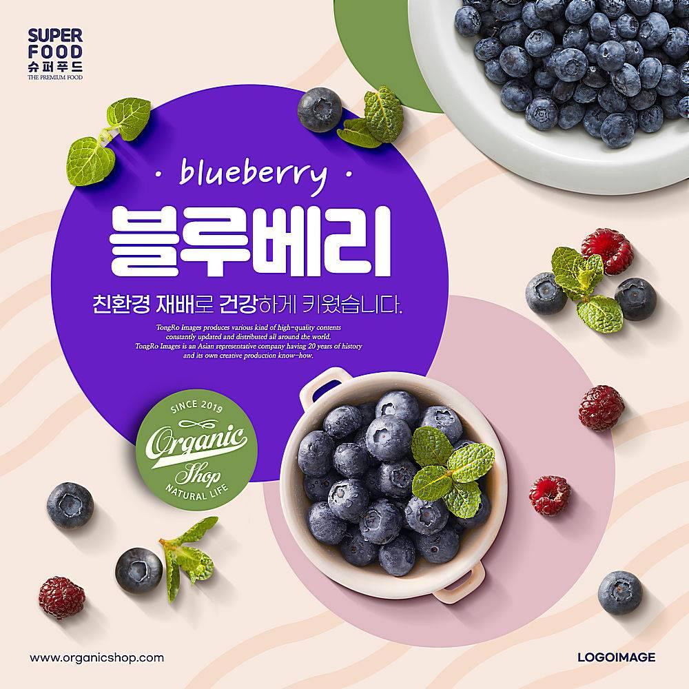 蓝莓树莓薄荷主题美食食物食材海报设计