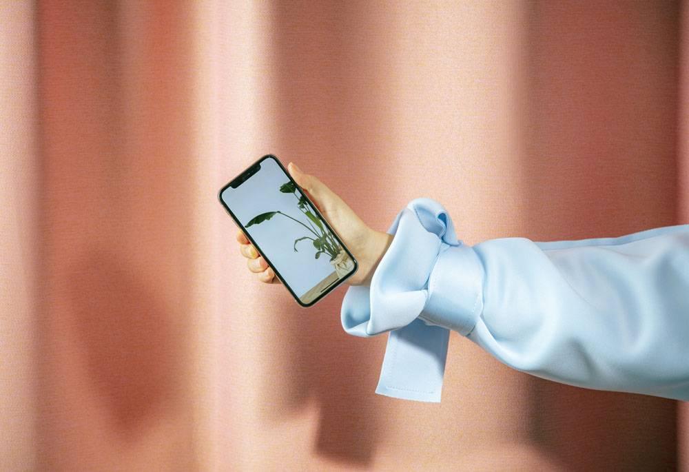 手持手机的女性的手