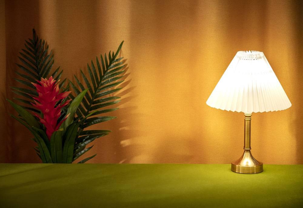 台灯植物花卉静物组合