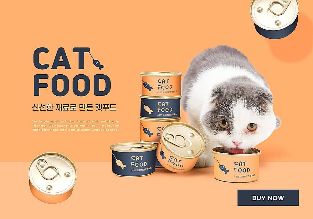 人类的宠物朋友与宠物粮食海报设计